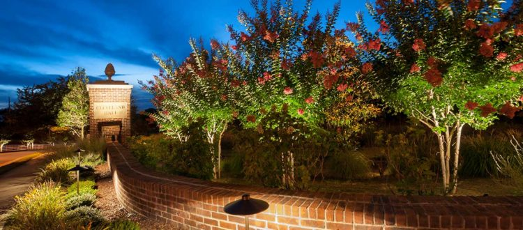 Why Your HOA Needs a Professional Lighting Designer