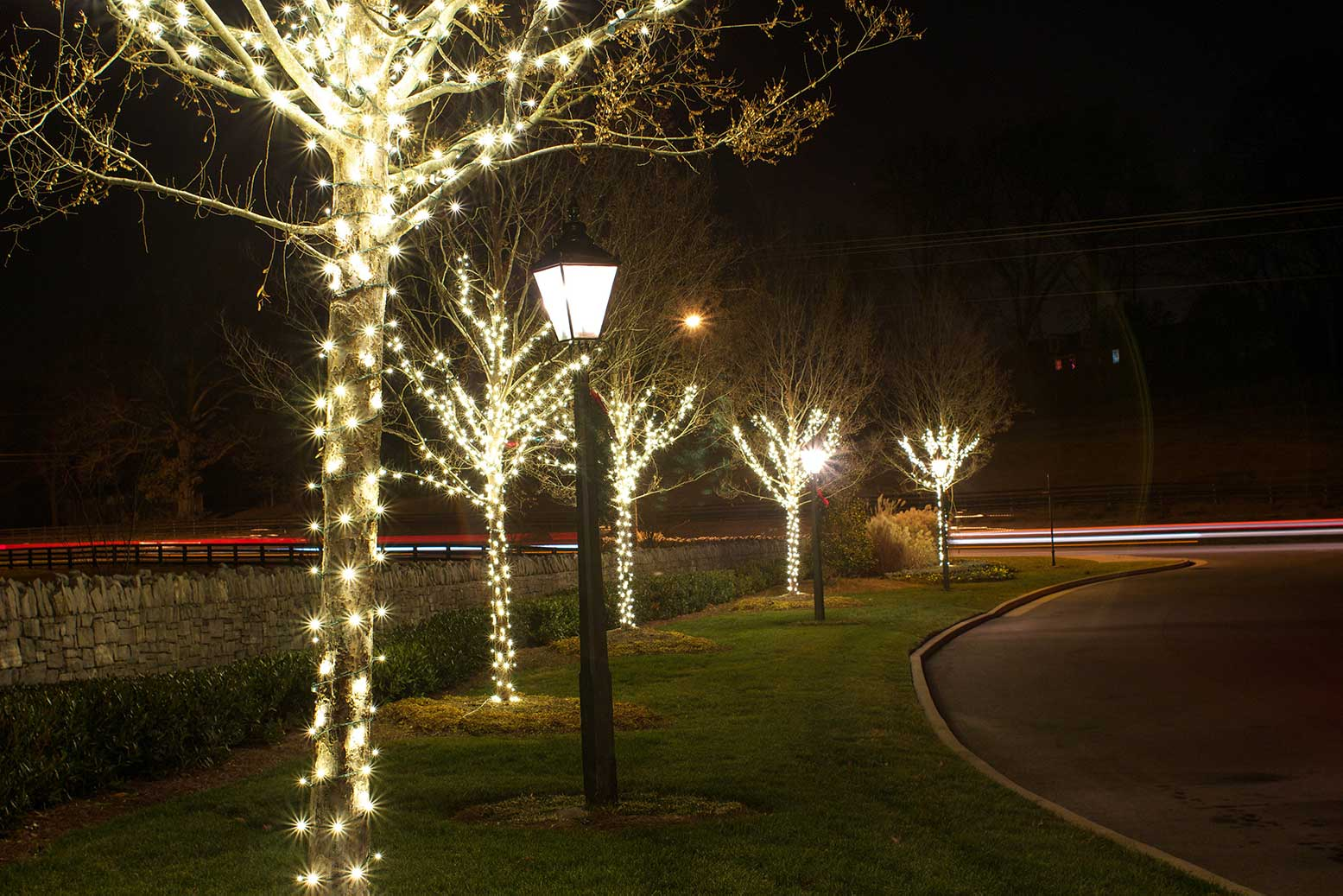 HOA entrance trees lit