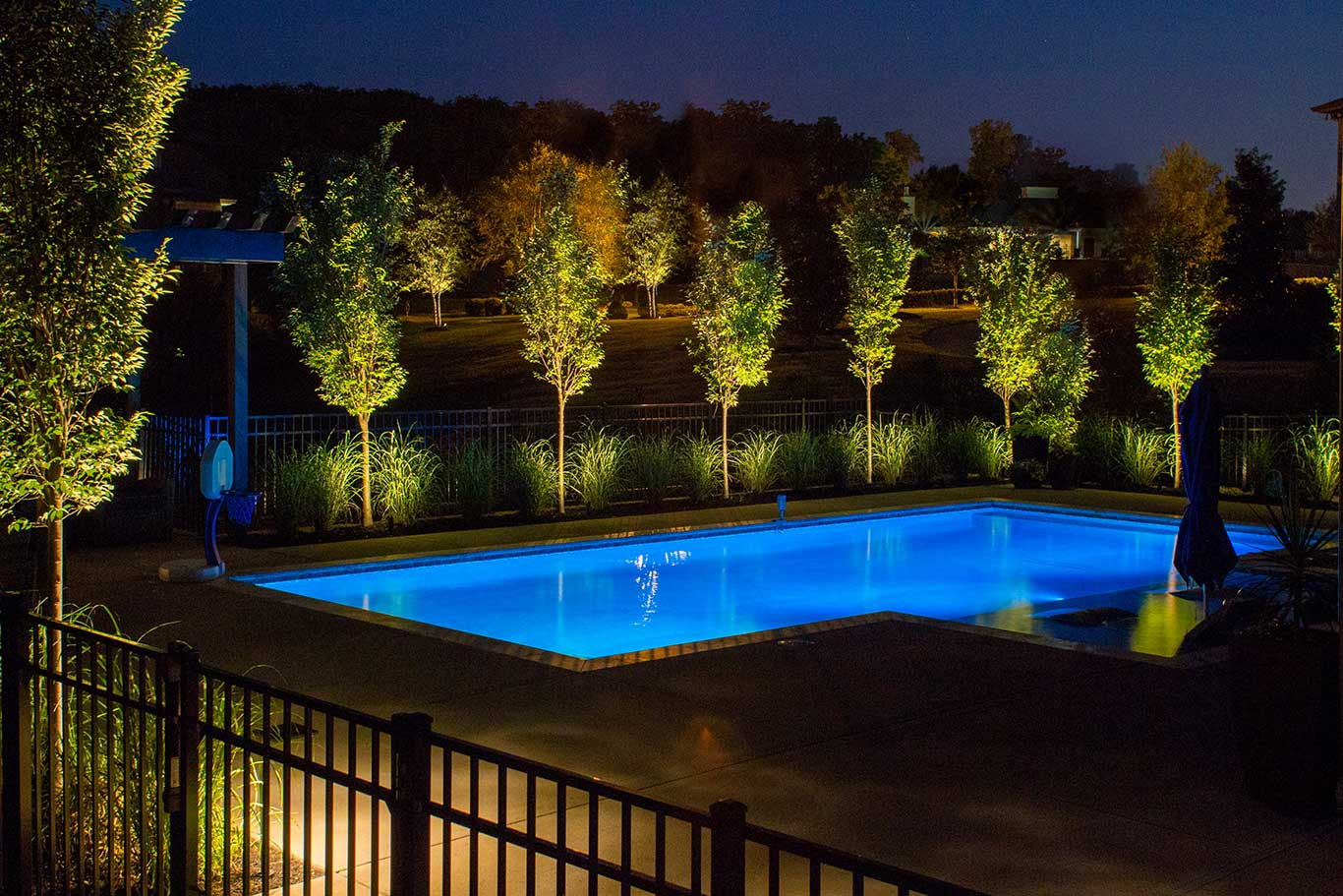 Landscape Lighting Around Pool In Brentwood, TN