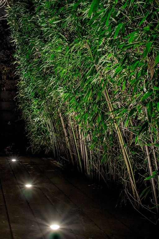 Patio Light Fixtures Images