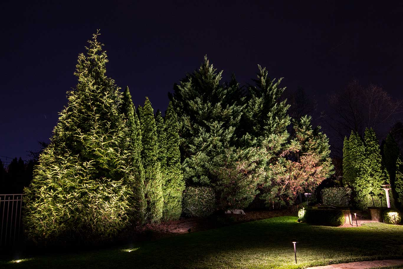 lighting trees along back perimeter of backyard for security