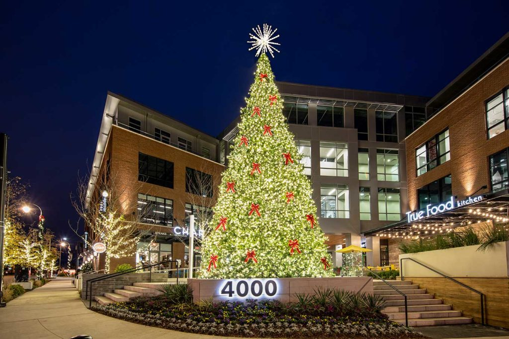 large outdoor commercial christmas tree