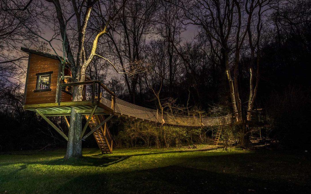 Landscape Lighting on Custom Built Tree House