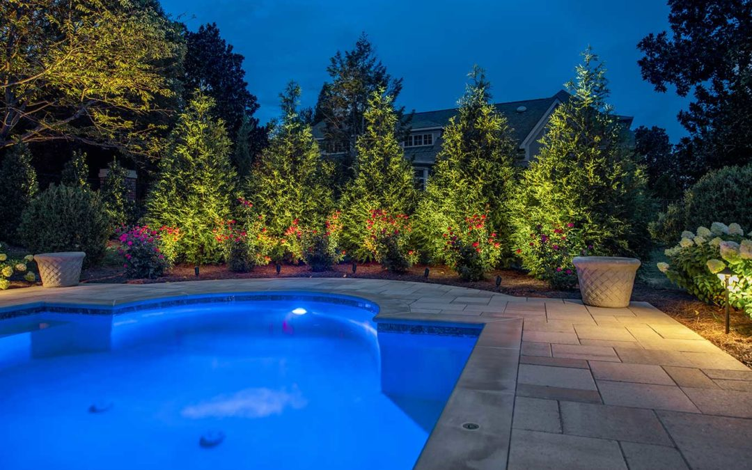 Evergreen Trees Landscape Lighting