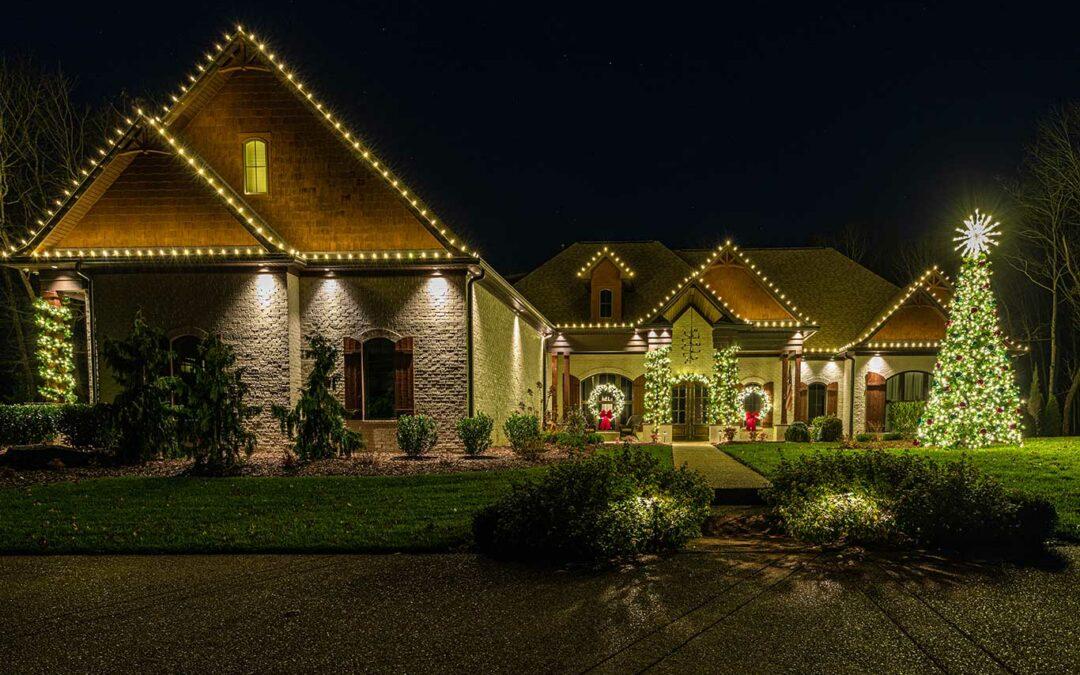 Outdoor Christmas Tree Service