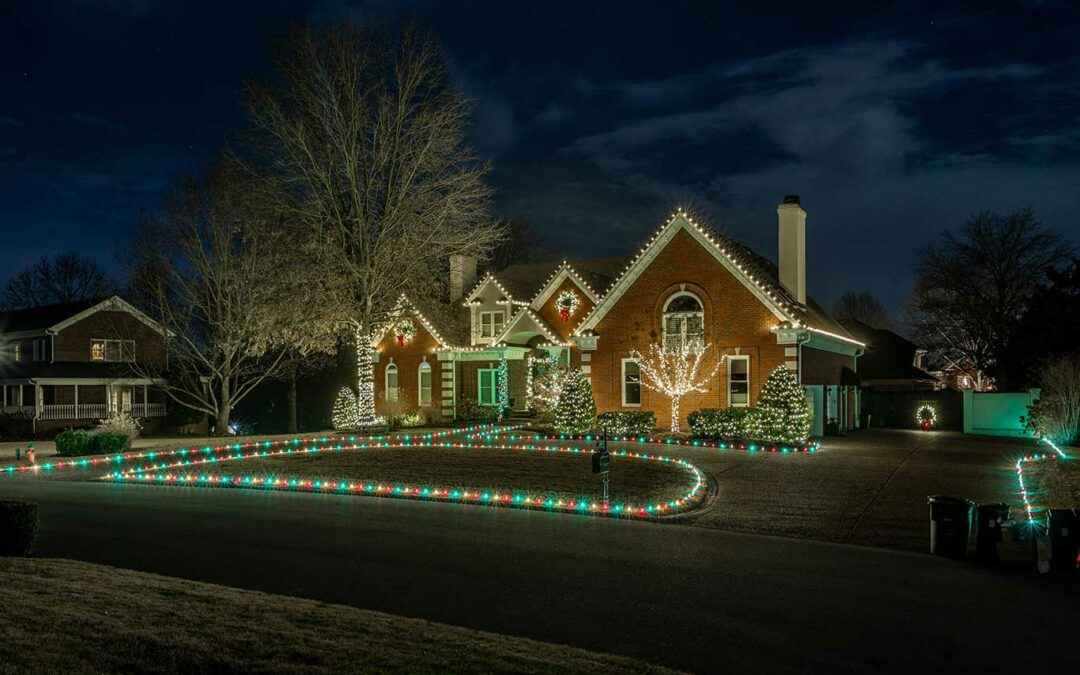 Christmas Lights Along Drive