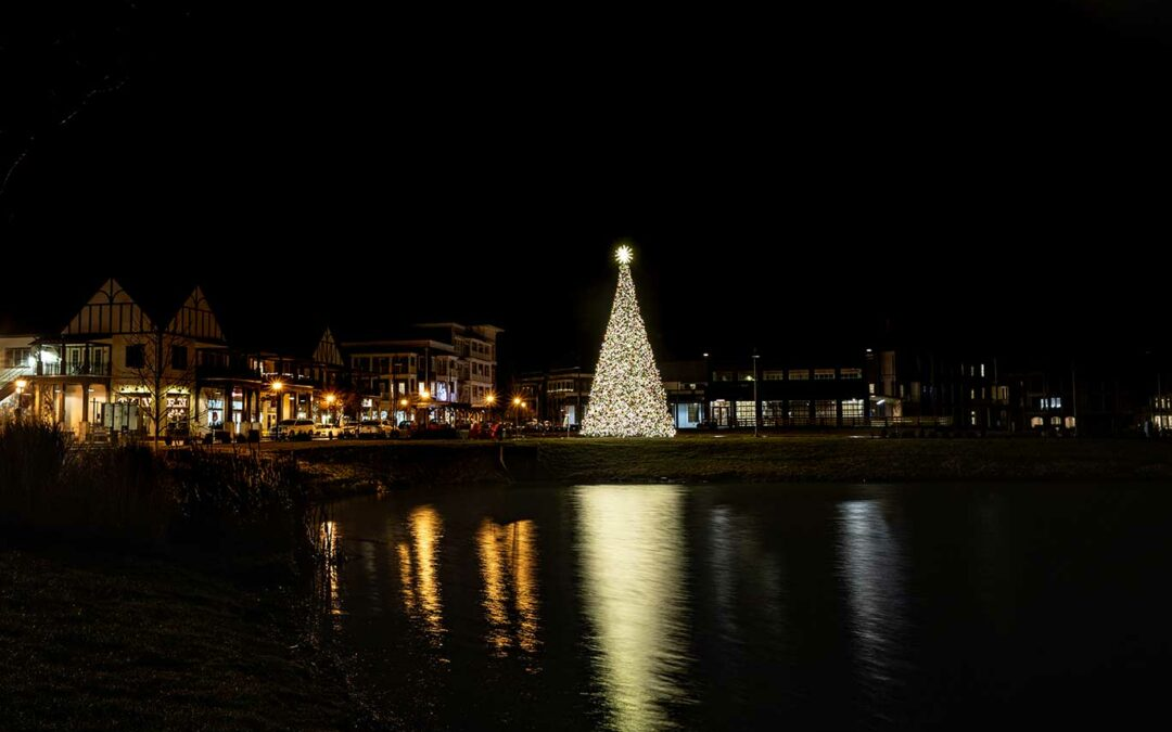 Westhaven Christmas Tree Reflection in Franklin Tennessee